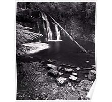 """Upper Lilydale Falls"" ∞ Lilydale, Tasmania - Australia Poster"