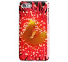 Red Flowering Gum Blossom iPhone Case/Skin