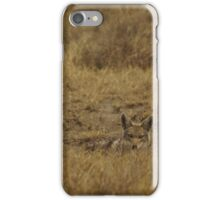 Jackal Peaking iPhone Case/Skin