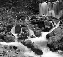 #1087 Water Falls In Black & White by MyInnereyeMike