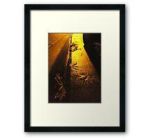 Brr... Framed Print