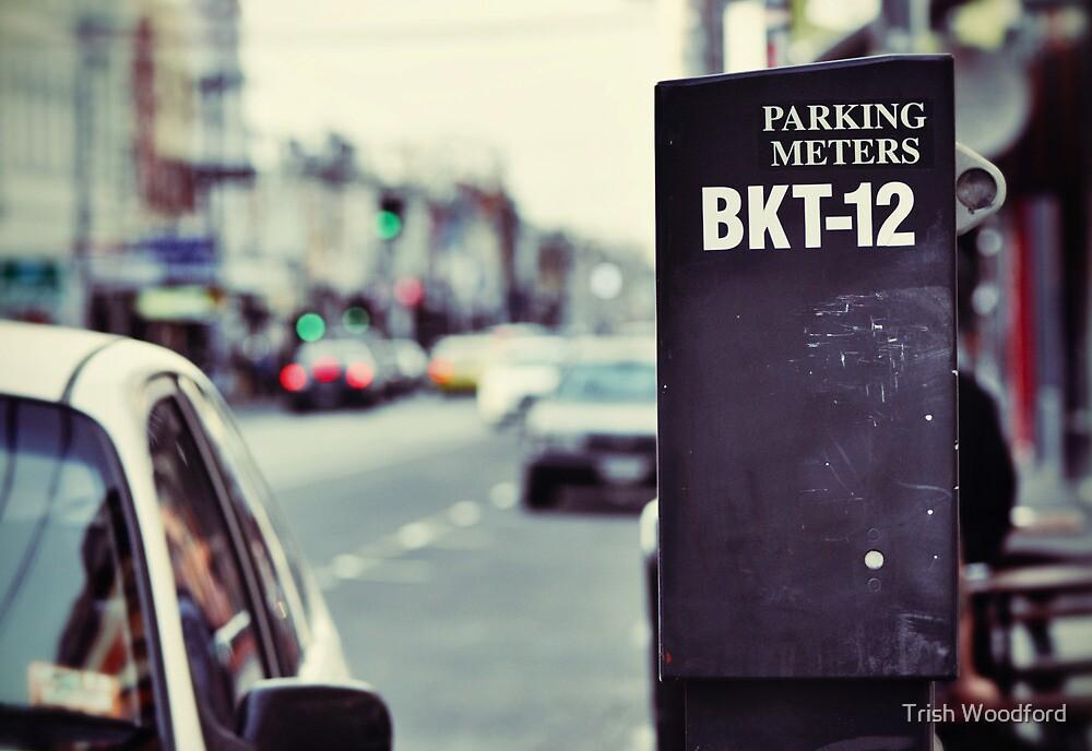 BKT-12 by Trish Woodford