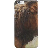 male lion portrait iPhone Case/Skin