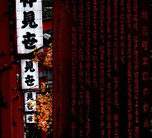 Autumn in Japan:  The One by Jen Waltmon
