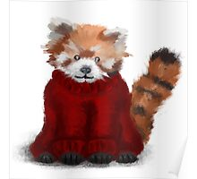 Red Panda in a jumper Poster