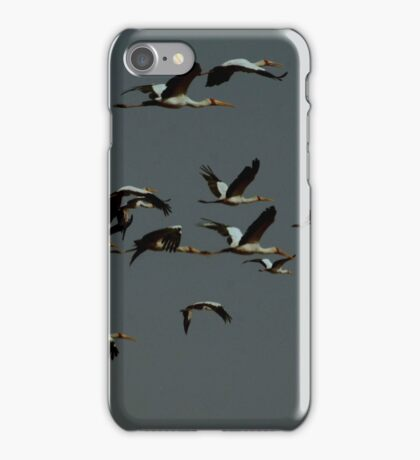 A Flock of Stalks iPhone Case/Skin