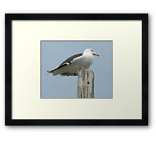 The King of Wickford Harbor Framed Print