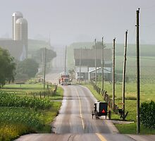 Amish Buggy confronts the Modern World by Randall Nyhof
