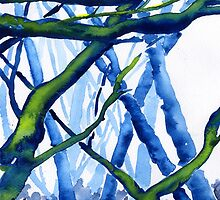 Watercolour of Derbyshire Woodland by WaterGardens