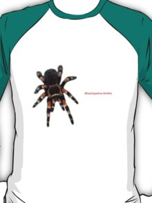 Mexican Red Knee Tarantula T-Shirt
