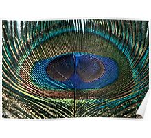 The Peacock Eye Poster