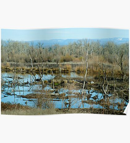 Oroville Nature Reserve Poster