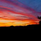 Arizona Sunset by K D Graves Photography
