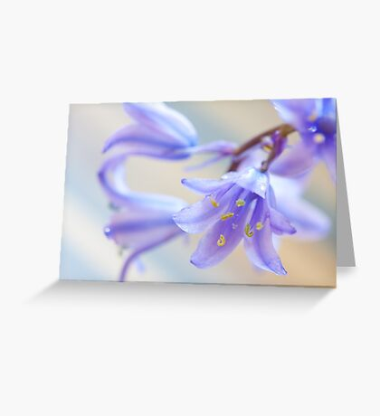 Bluebell flowers Greeting Card