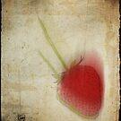 Stawberry high by Sonia de Macedo-Stewart