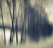 borderline by Dorit Fuhg