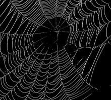 SpiderWeb by XxJasonMichaelx