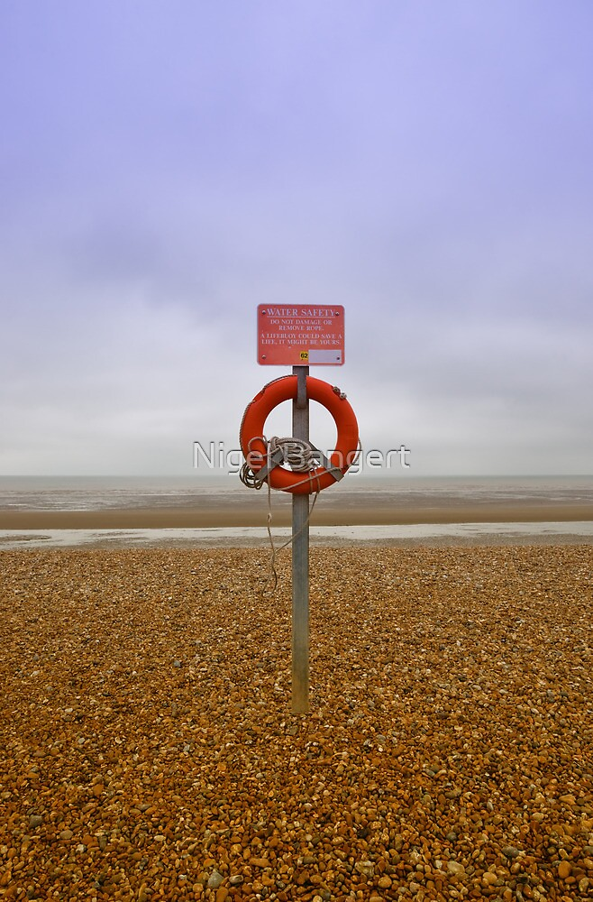 Lifebelt  by Nigel Bangert