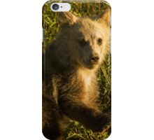 Grizzly Cub-Signed-3744 iPhone Case/Skin