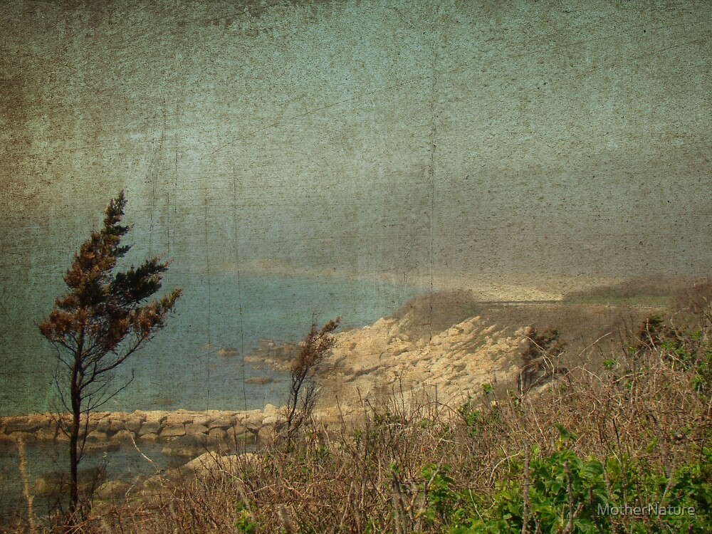 View From Nobska Point - Woods Hole MA by MotherNature