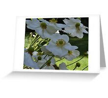 White flowers bending in wind Greeting Card