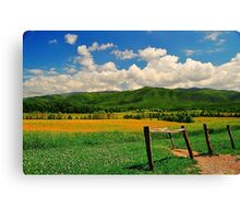 Mountain Valley with a Fence Canvas Print
