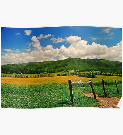Mountain Valley with a Fence Poster