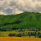 Mountain Ridge by joevoz
