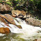 White Water Falls by joevoz