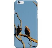 Eagles at rest  Wollert, Victoria iPhone Case/Skin