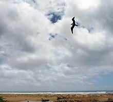 Ewa Over Kealia Beach by Hapatography