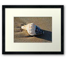 Memory of the ocean Framed Print