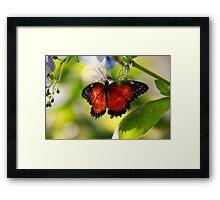 Garden Guest Framed Print