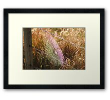 Spiderweb affected by UV Framed Print