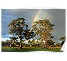 Rainbow Trees Poster