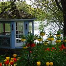 Henry's Garden by Marilyn Bell