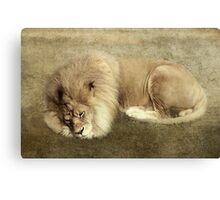 A Royal Rest Canvas Print
