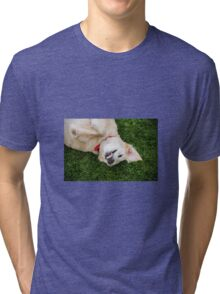 Smile for the Photographer!  Tri-blend T-Shirt