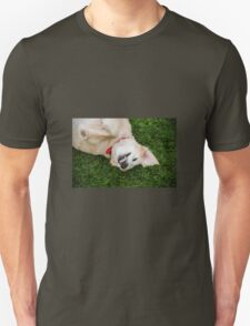 Smile for the Photographer!  T-Shirt
