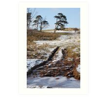 Tractor marks up to High Craggs Art Print