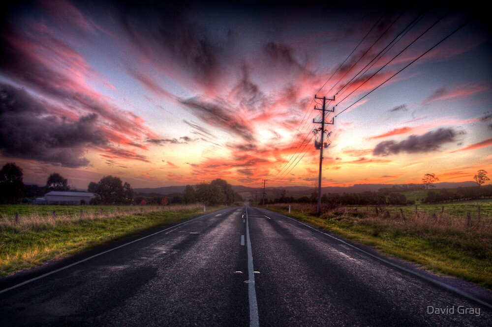 The back road by David Gray