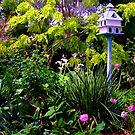 Birdhouse In the Garden by Gabrielle  Lees