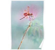 Red Dragonfly Poster