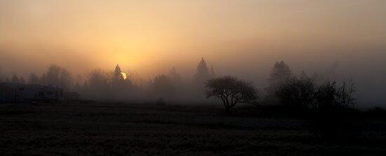 Misty Sunrise  by Shawn Bourque
