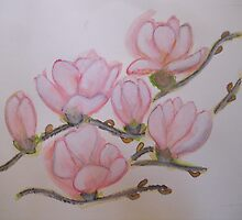 MAGNOLIA  BLOSSOMS by Heidi Mooney-Hill
