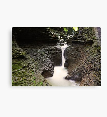 Milk Falls Canvas Print