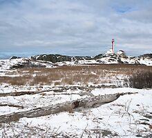 Cape Forchu winter scene by Shawn Bourque