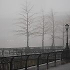 Fogged and Running by peterrobinsonjr