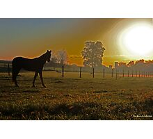Farm at sunrise Photographic Print