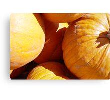 Pumpkin grounds,   Canvas Print
